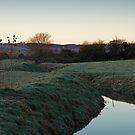 Pre-dawn at Durleigh Brook by kernuak