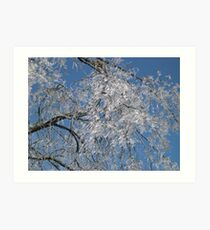 Frozen Icicle Tree Art Print