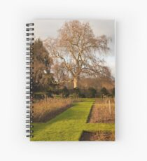Giant Oak Bathed in Winter Afternoon Light Spiral Notebook