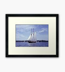 Bluenose 2 -Halifax Harbour Framed Print