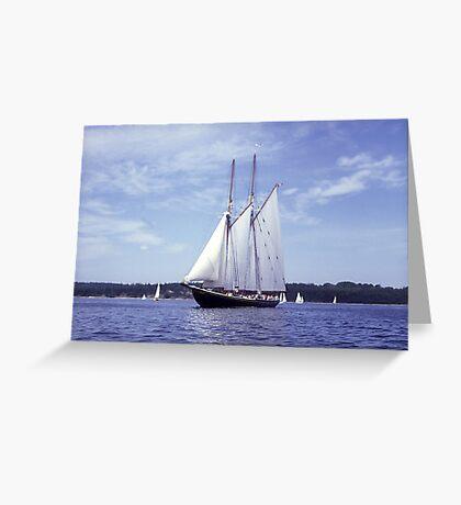 Bluenose 2 -Halifax Harbour Greeting Card
