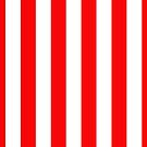 Jumbo Berry Red and White Rustic Vertical Cabana Stripes by honorandobey