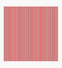 Mini Berry Red and White Rustic Vertical Pin Stripes Photographic Print