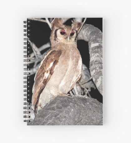 Verreaux's Eagle Owl Spiral Notebook