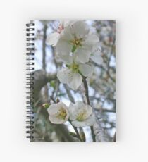 Blossoming of Almond Spiral Notebook