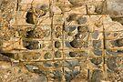 Rock Ledge by Werner Padarin