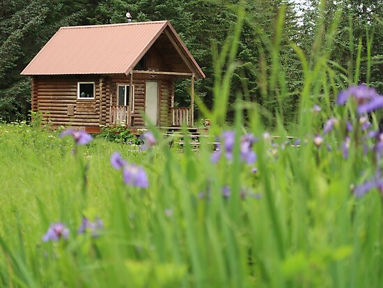 Alaskan Cabin with Irises  by suitcaseofbks