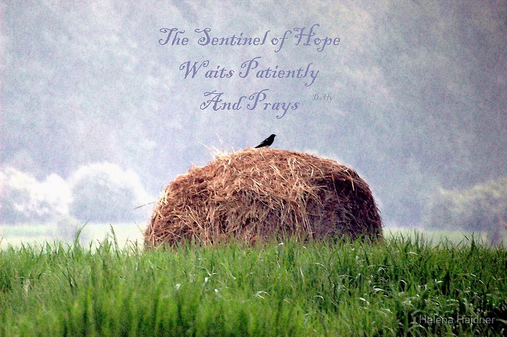 The Sentinel of Hope, Waits Patiently, And Prays by Helena Haidner