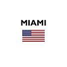 Miami USA American Flag Light-Color by TinyStarAmerica