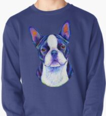 Colorful Boston Terrier Dog Pullover