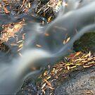 Water like Smoke by Kym Howard