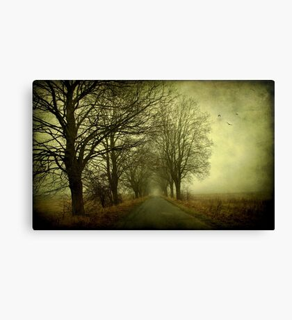 Empty way Canvas Print