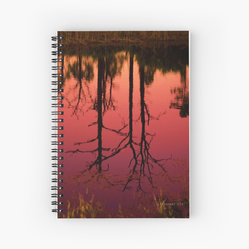 Ilona's Pond Spiral Notebook