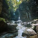 Watkins Glen by David Lamb