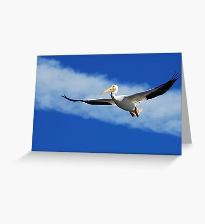 Another Day at the Cape Greeting Card