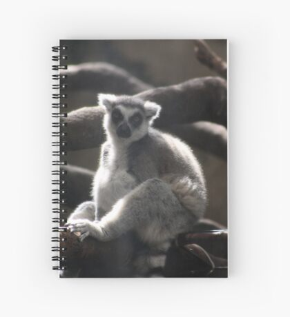 Ring Tailed Lemur Spiral Notebook