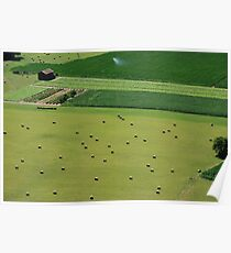 Open Fields Poster