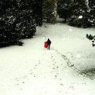 sledding by KERES Jasminka
