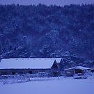 Winter Farm by Paul Morley