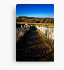 Slippery Path Canvas Print