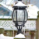 light in the snow by andytechie