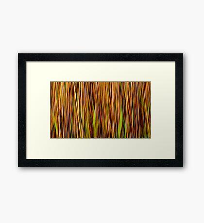 Grasslands #2 Framed Print