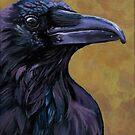 Raven wildlife bird painting by ria hills