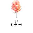 Expelliarmus! by Kevin-K