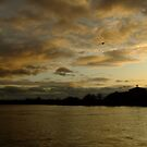 December Sunset on the Thames by Themis