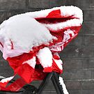 Saddle cover in the snow by Marjolein Katsma