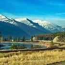 Thanksgiving on the Clark Fork, Montana, USA by Bryan D. Spellman