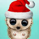 Christmas Hedgehog Wearing a Santa Hat by jeff bartels