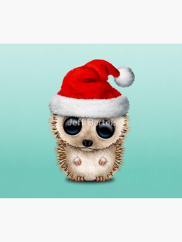 Christmas Hedgehog Wearing a Santa Hat by JeffBartels