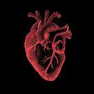 Dark Heart by ERae