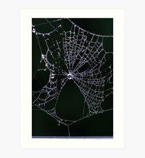 Web Drops Art Print
