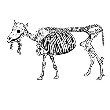 cow by MrLone