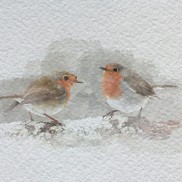 Watercolour Robins by Kelly-Ferguson