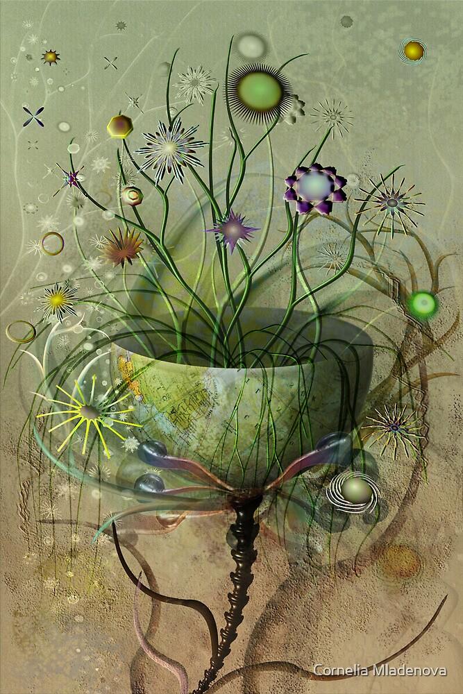 Bursting into Blossom by Cornelia Mladenova
