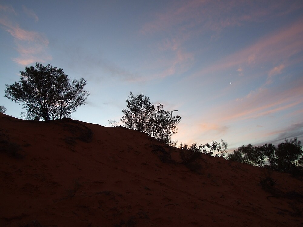 Sand-dune sunset, Thargomindah, QLD by Caroline Crawford