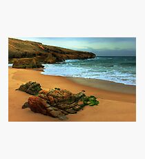 shaped by the sea.... Photographic Print