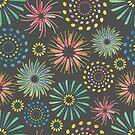Fireworks by Shyned Maritan