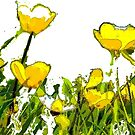 Buttercups  by bywhacky