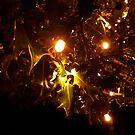 Tree lights by Rodney Bantleman
