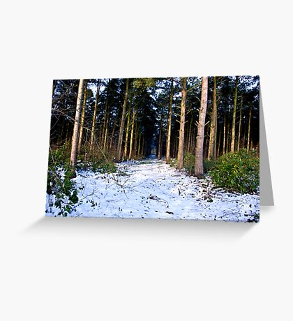 Snow Path Greeting Card