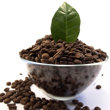Bowl of Coffe Beans by smapics