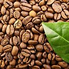 Coffee Beans by James  Smart