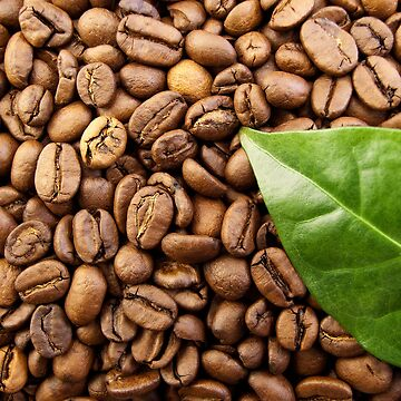 Coffee Beans by smapics