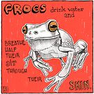 Frogs drink water, and breathe half their air, through their skin by Dawn Pedersen