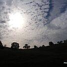 Strange Clouds by NancyC