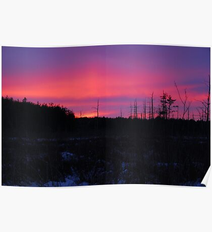 Pink and blue sunset Poster